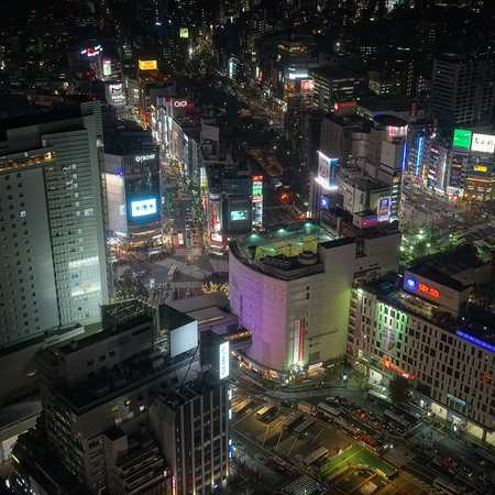 Shibuya Neighbourhood Guide