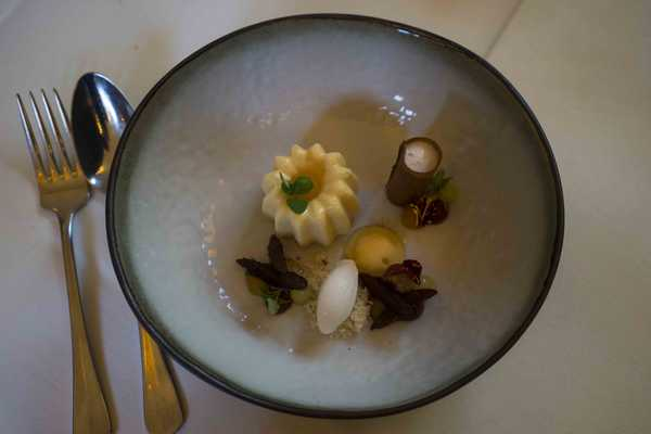 Apricot, basil, prosecco and coffee flavours on one plate